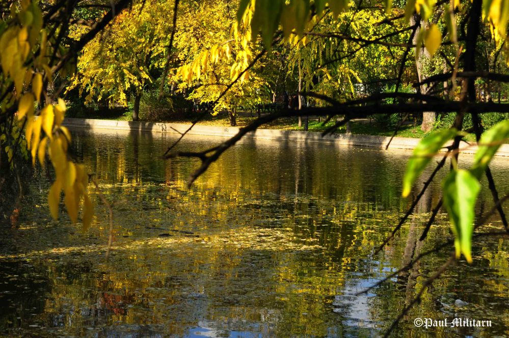 autumnal-reflections-on-the-lake