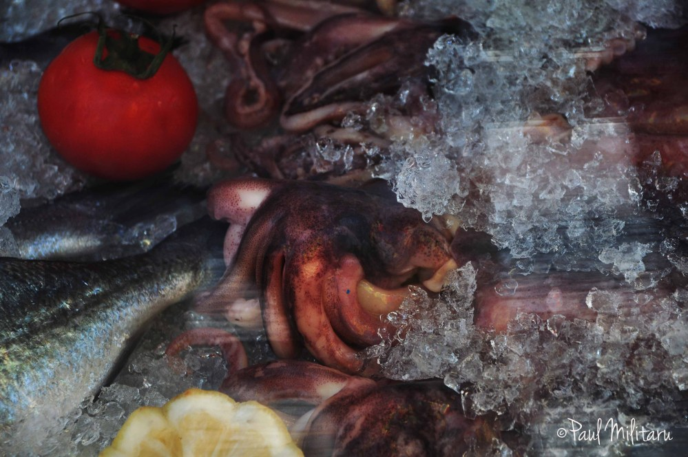 ice, octopus, lemon and tomato 2