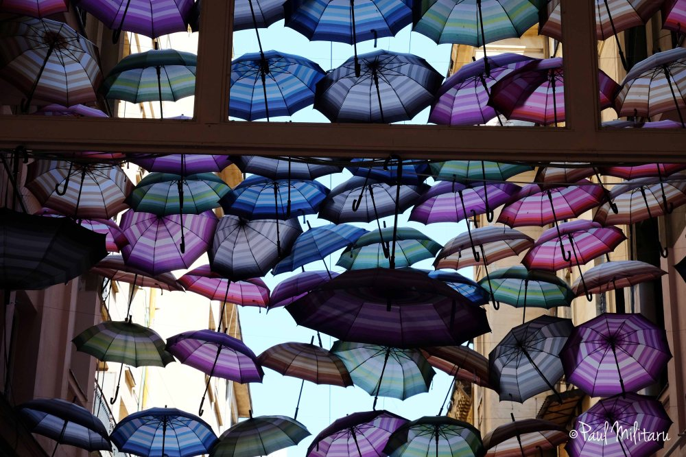 beautiful colored umbrellas