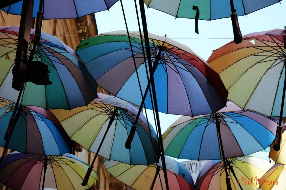 dance of colorful umbrellas