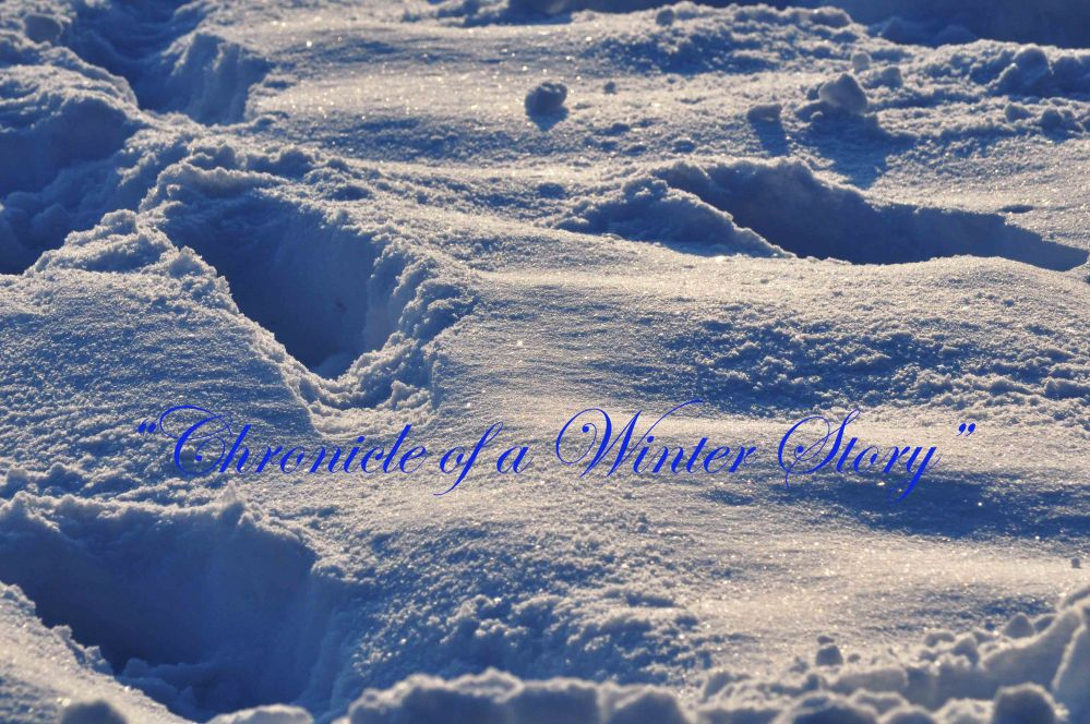 Chronicle of a Winter Story 1