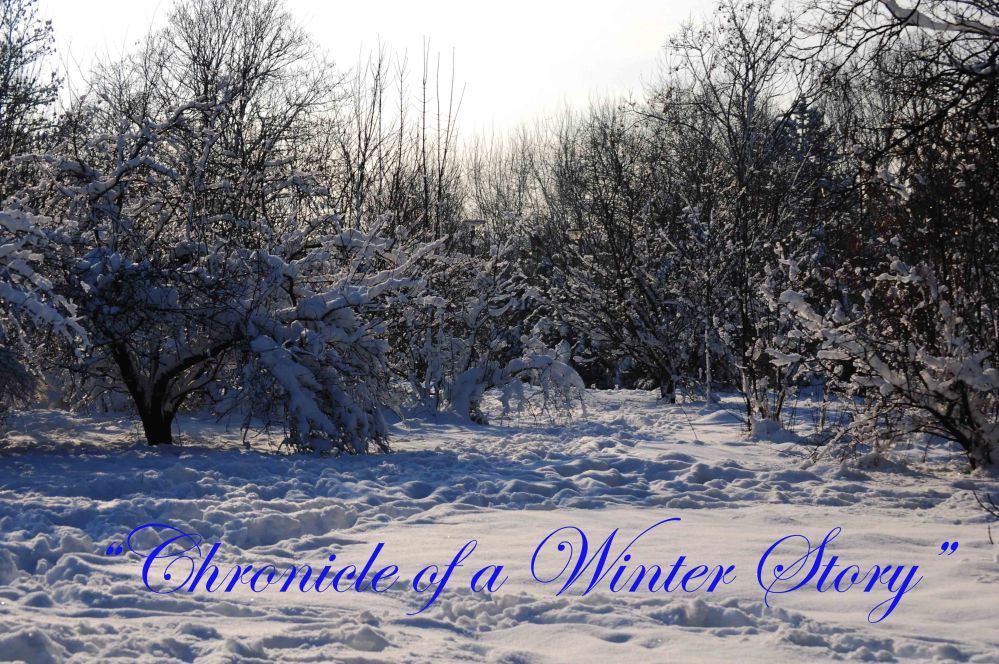 Chronicle of a Winter Story 2