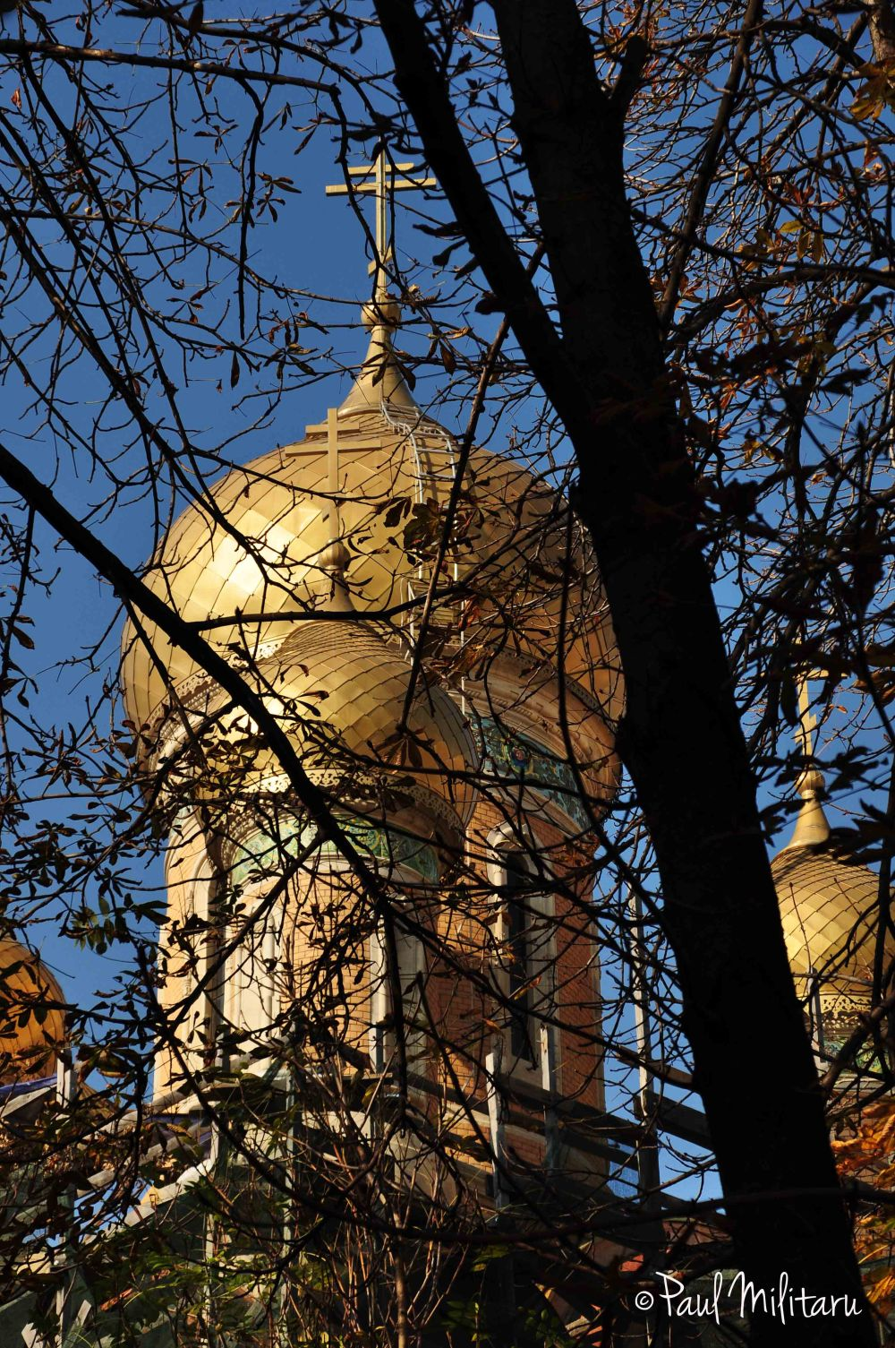 the dome of the Russian church behind the branches