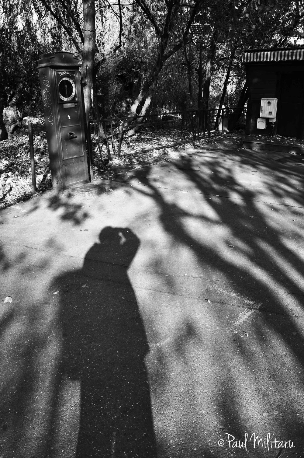 what it means to be just a shadow