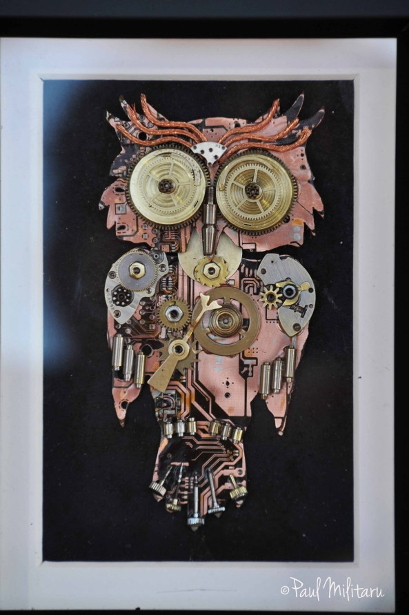 owl ... of clocks