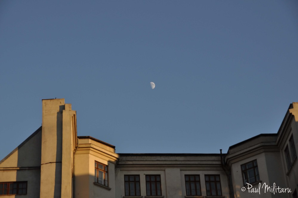 moon at golden hour