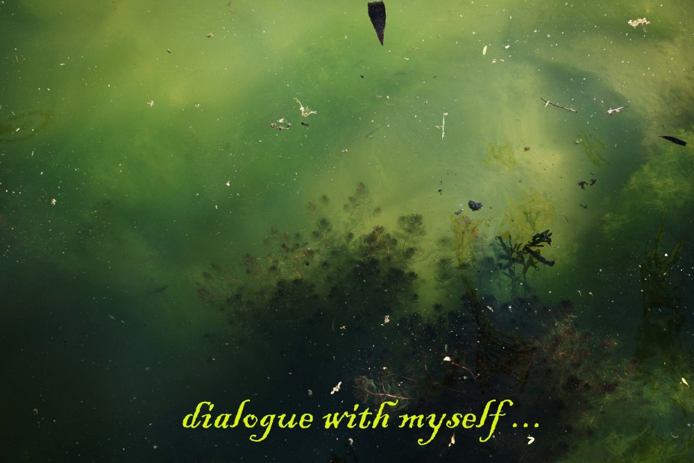 dialogue with myself 2