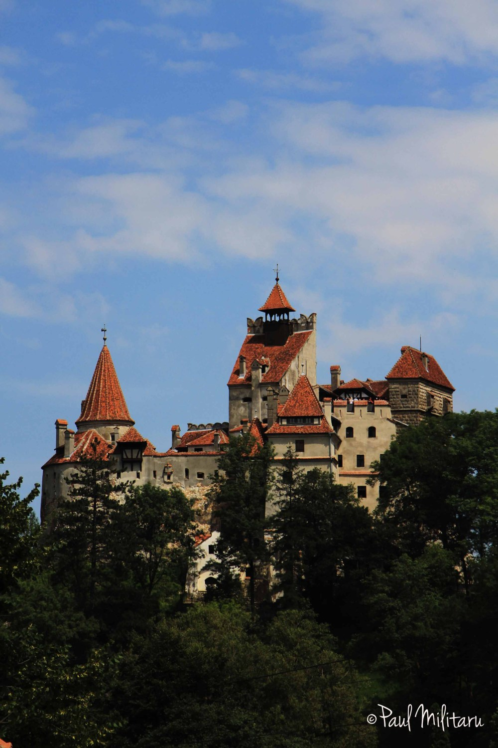 the castle of the worst vampire - Dracula