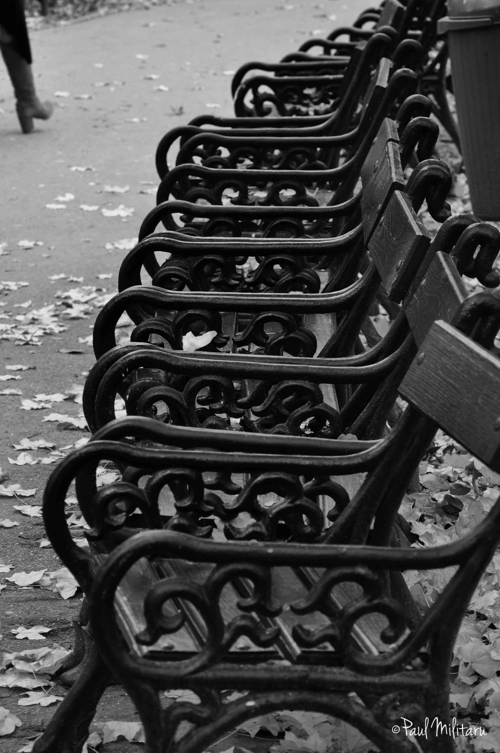 deserted chairs