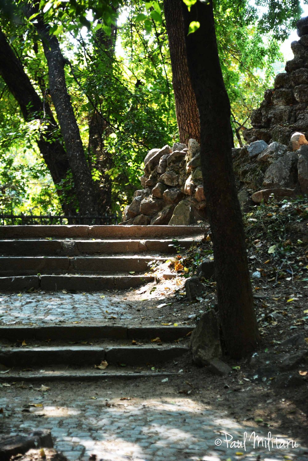 stairs to the hill