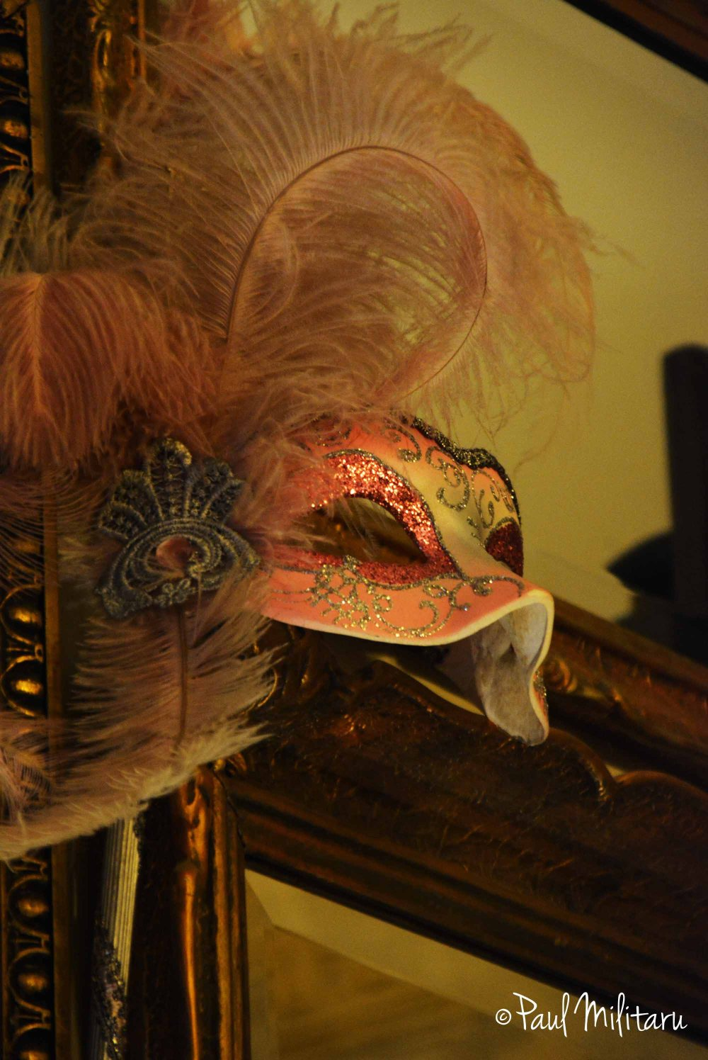 forgotten from Masquerade...