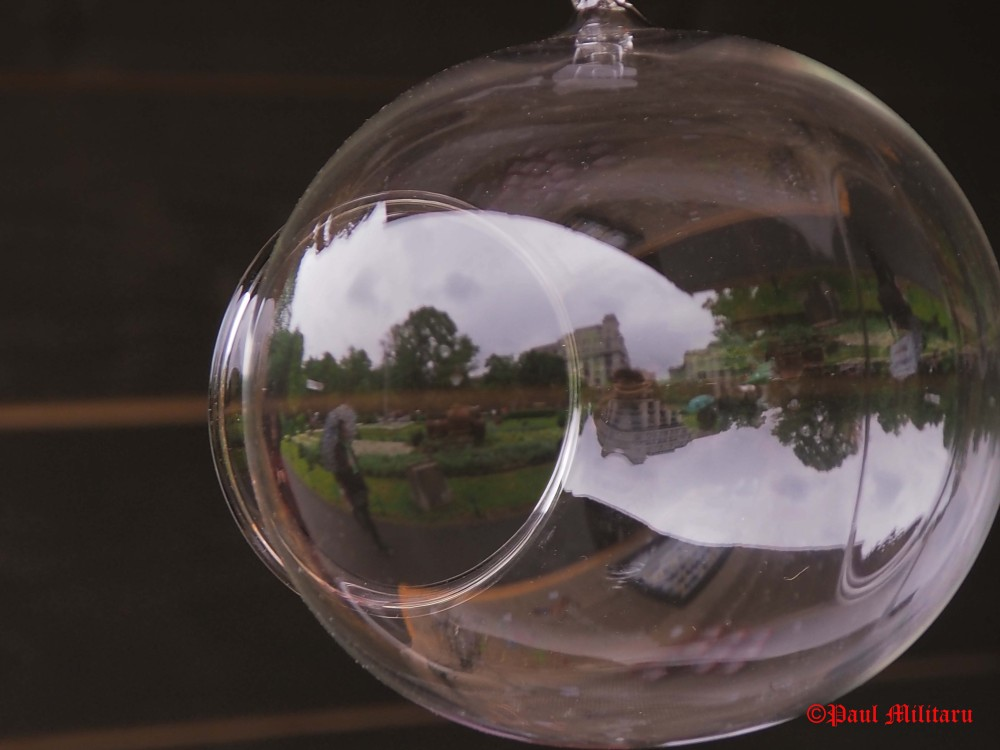 life seen in a glass globe