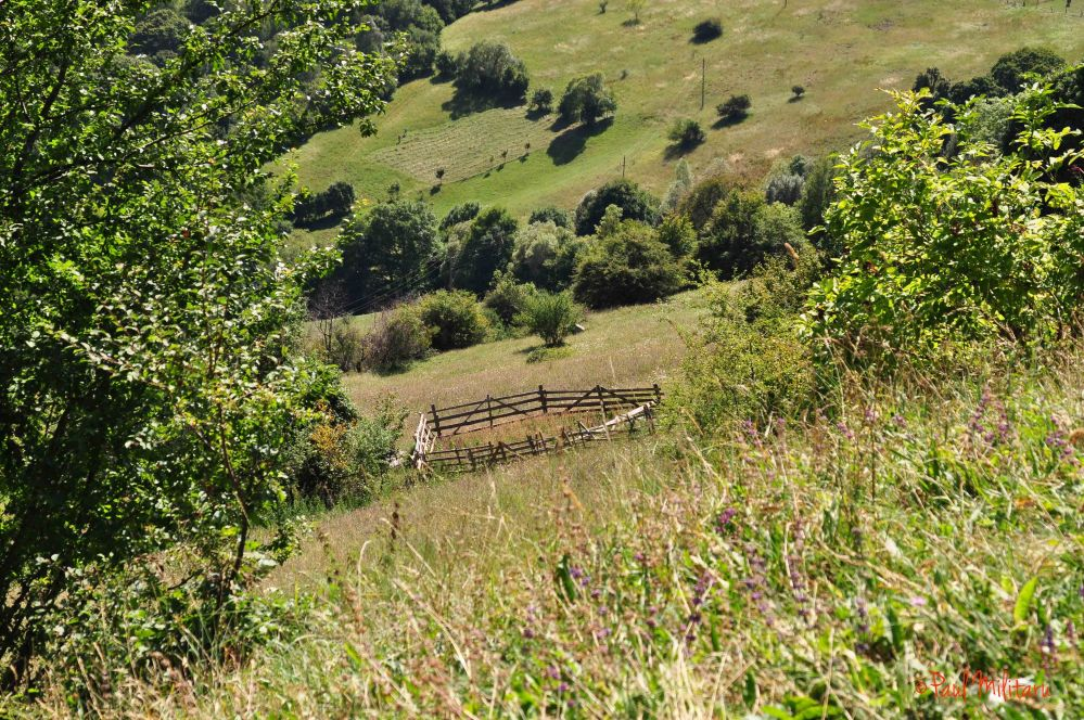 wooden fence in the mountain