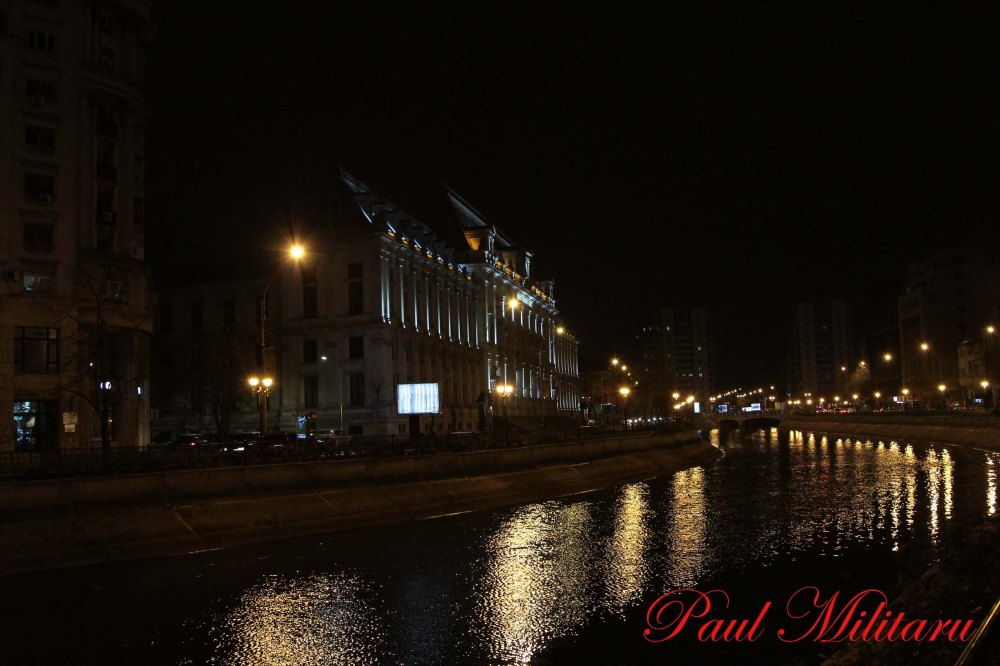 river dambovita at night