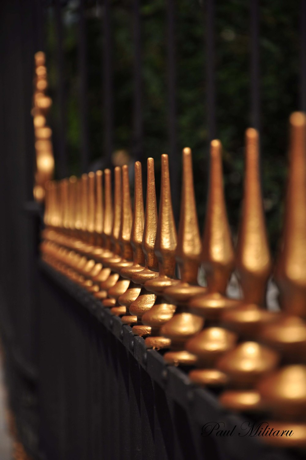 fence in night