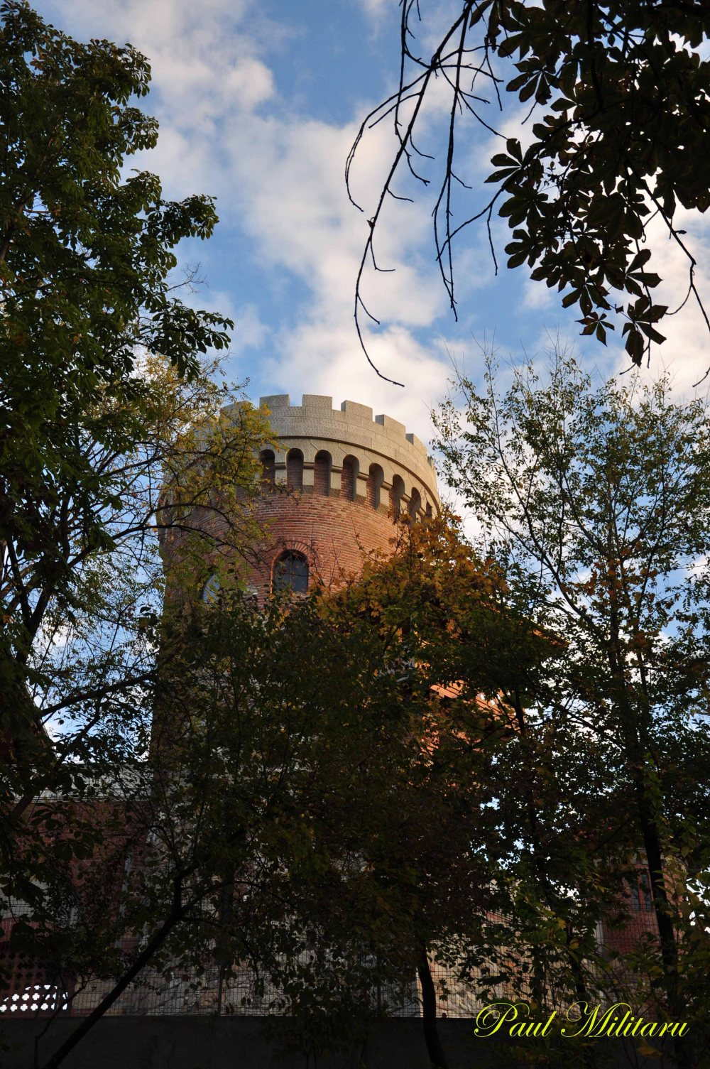 water tower The Fortress of Țepeș Voda (1906)