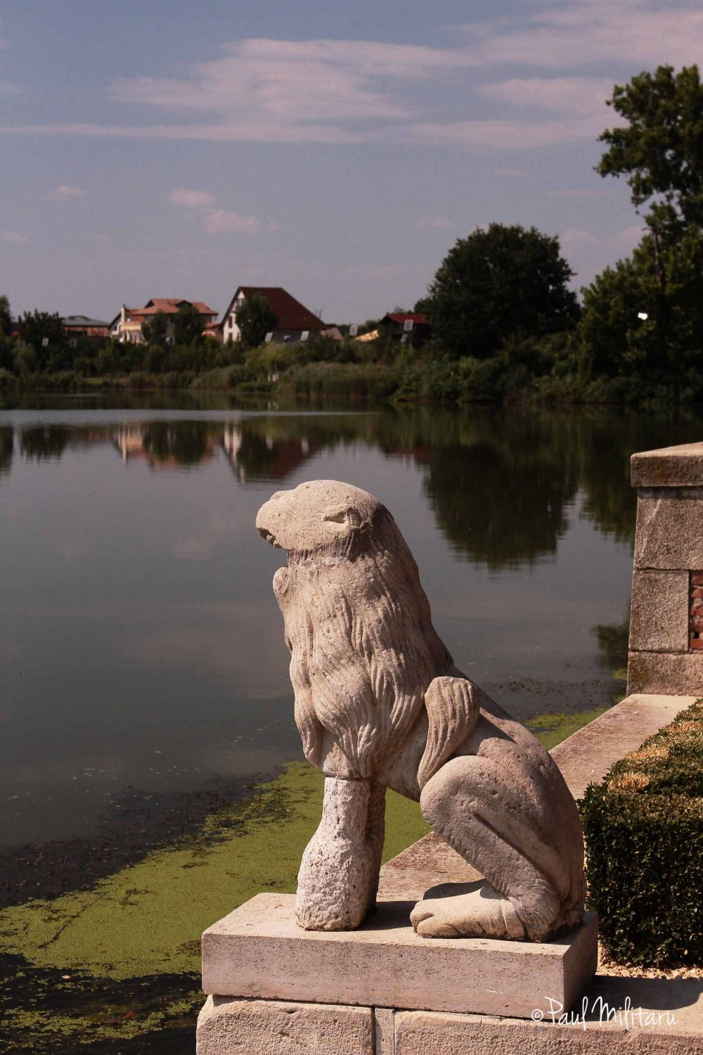guardian of the lake