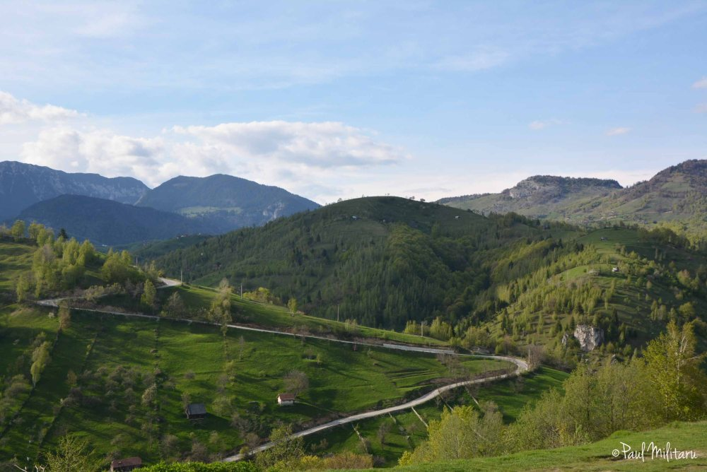 the road to the fortress of Bran