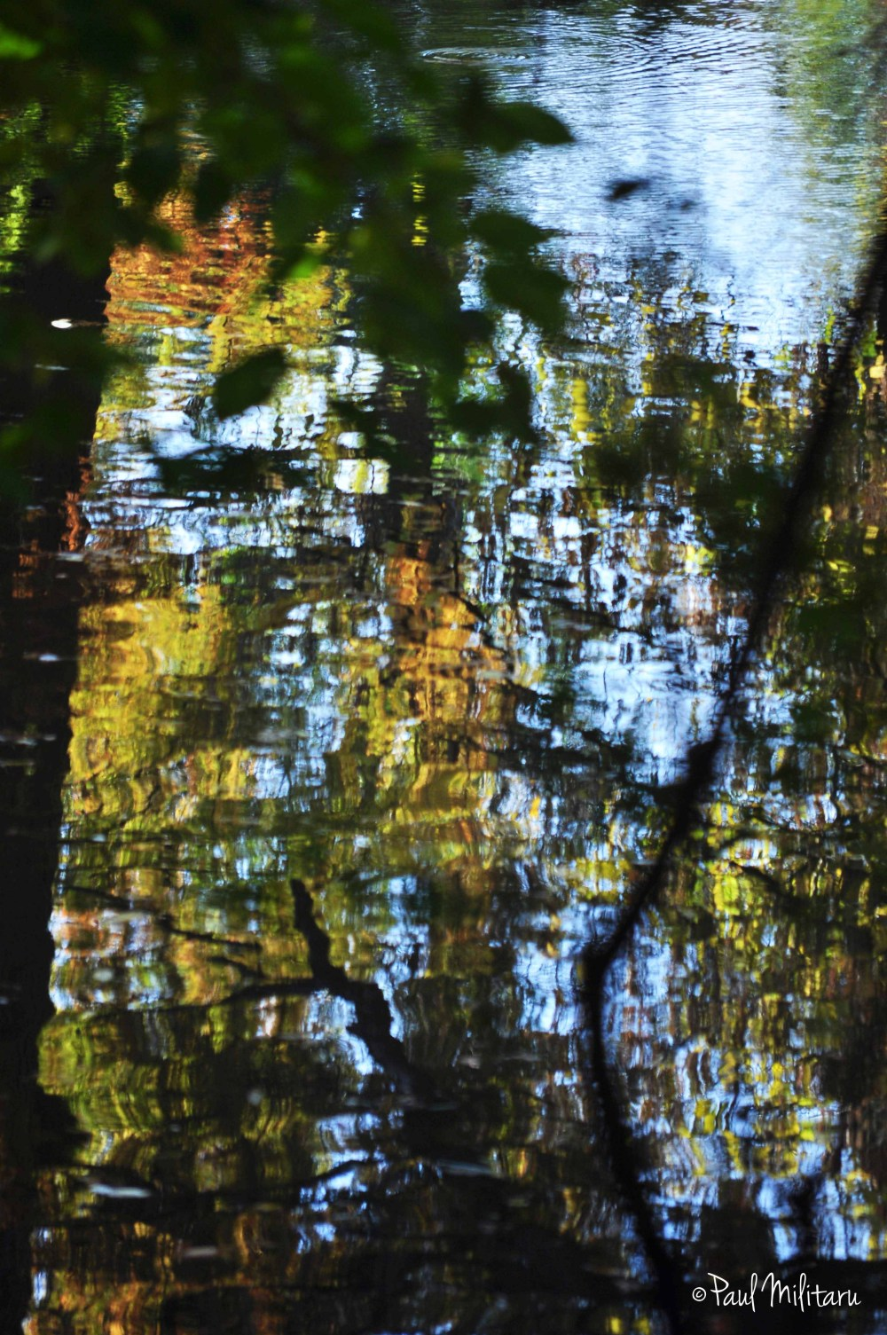 abstract - water reflections