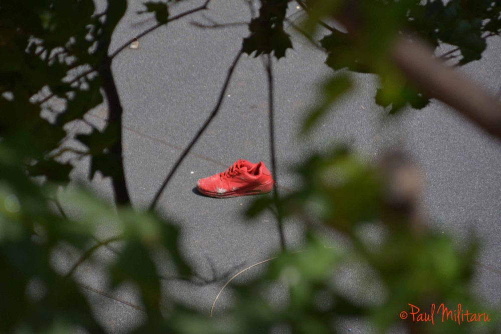 lost red shoe